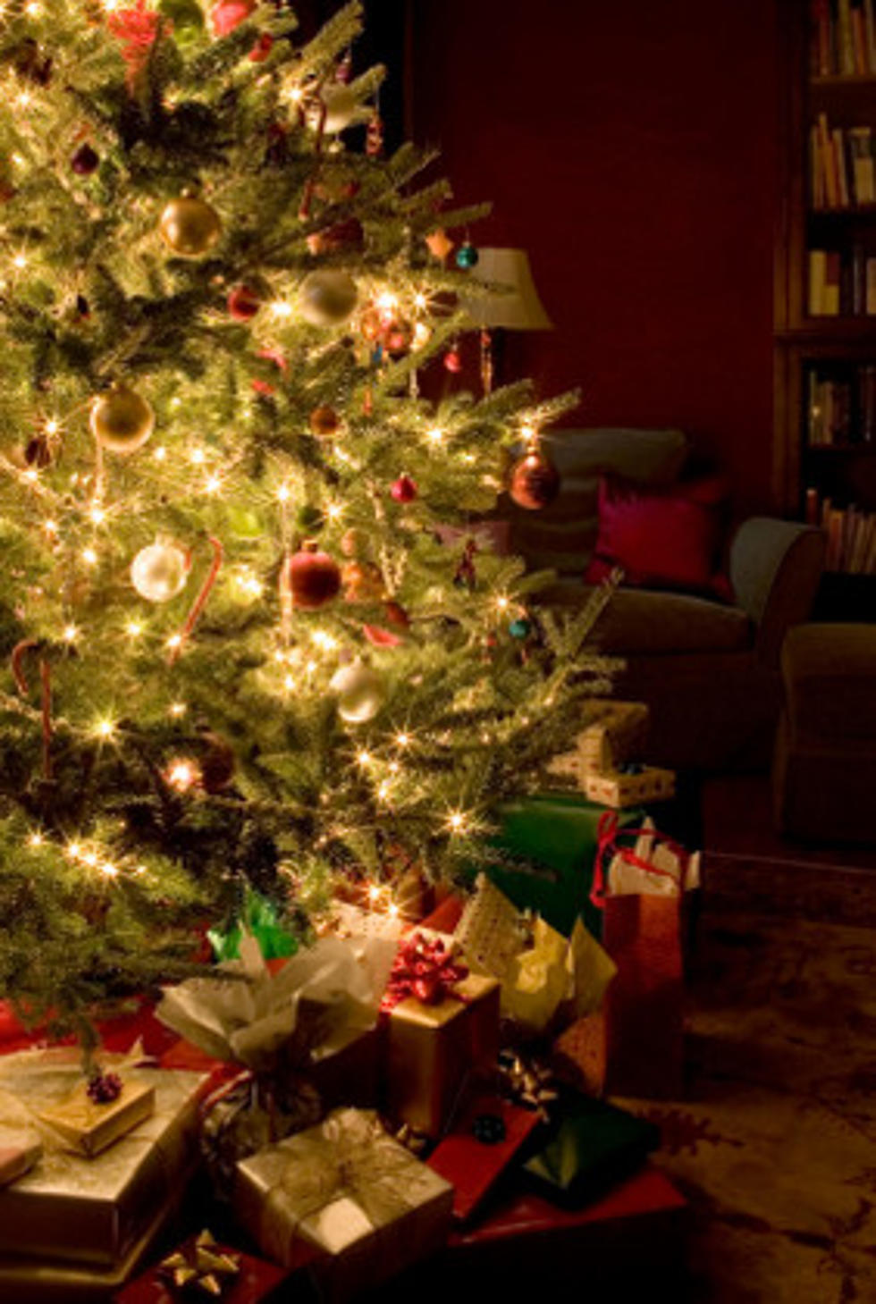 when do you put up your christmas decorations poll - When Do You Put Up Your Christmas Tree