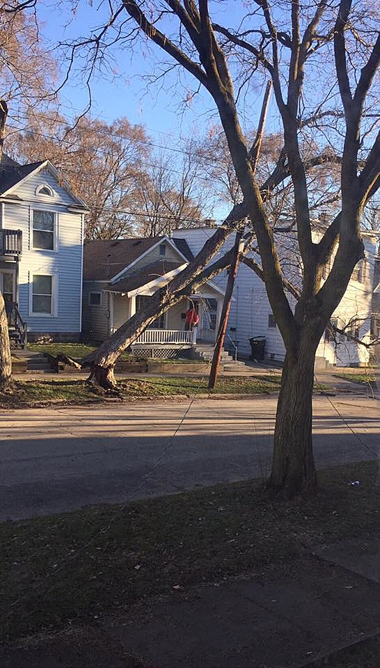 Downed trees and power lines on Grand Rapids' West Side. (Bridget Corkum/Townsquare Media)