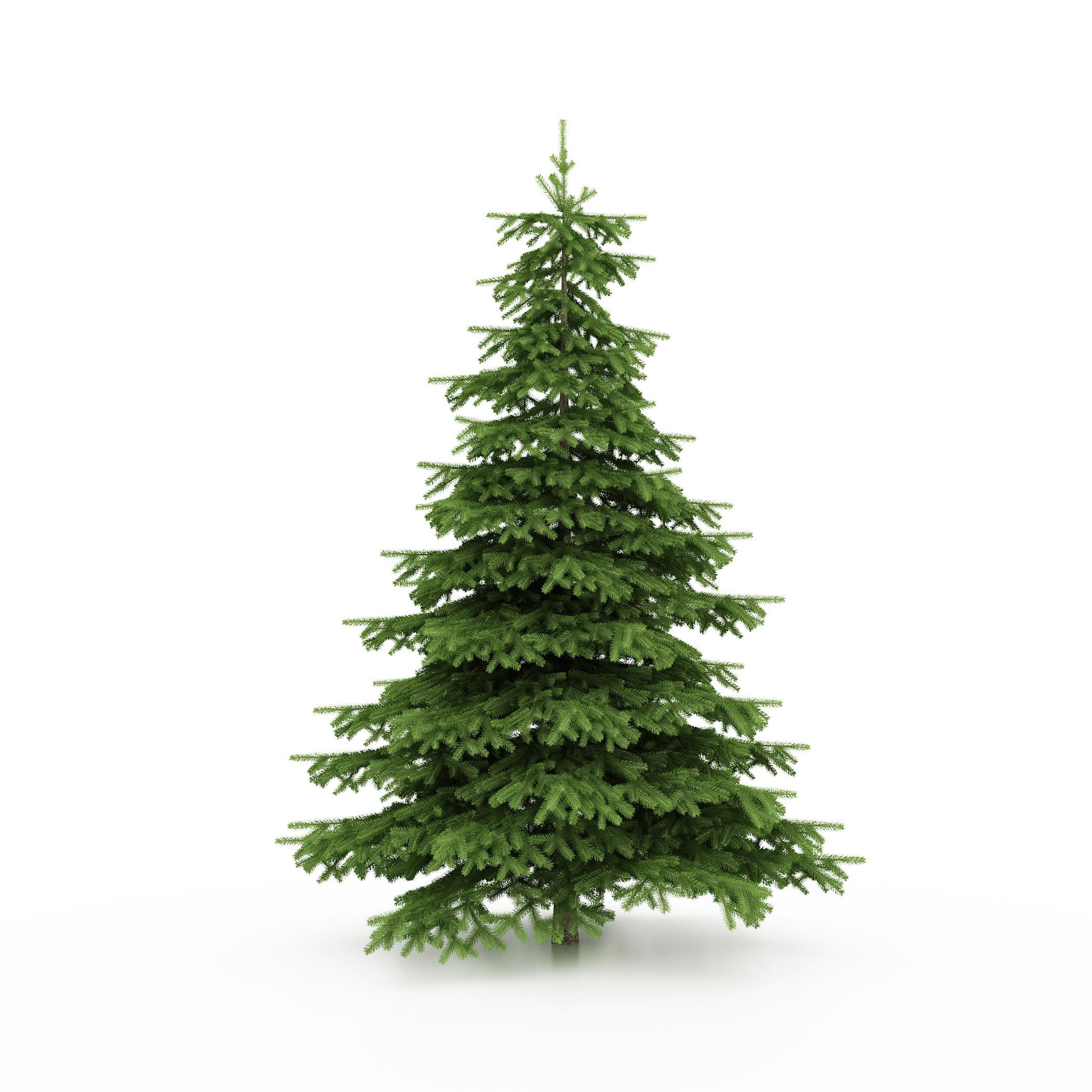 Wendy\'s \'As Seen On TV\' Christmas List
